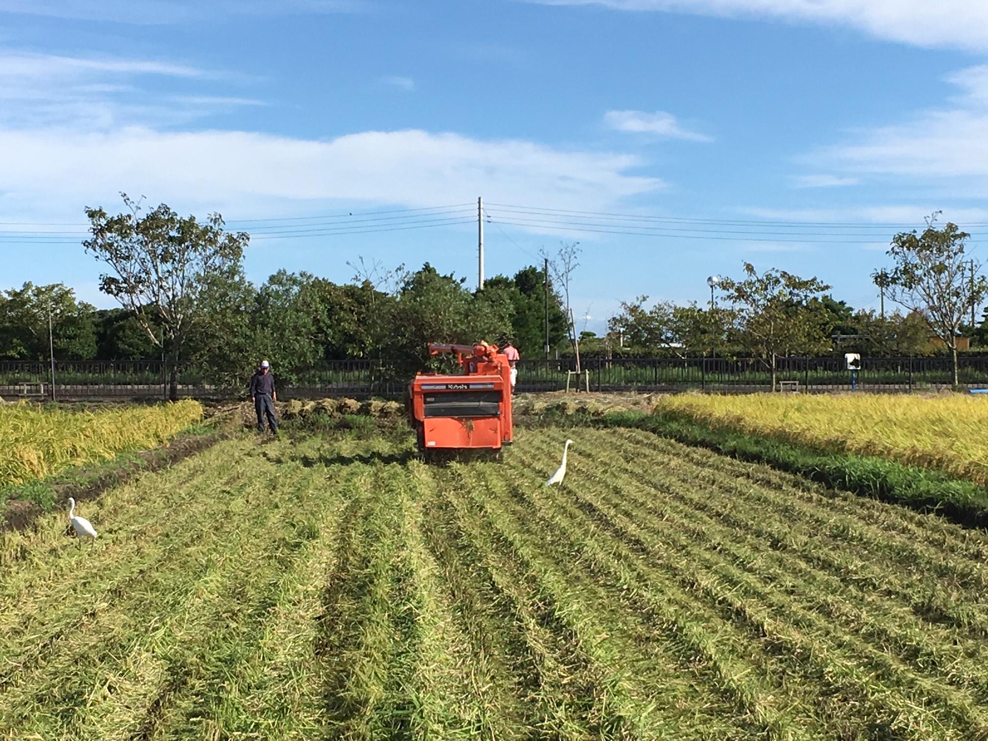 農家のなり手不足… 農家農地問題